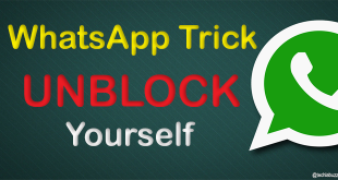 Send A Message To The Person Who Blocked You On WhatsApp techlabuzz